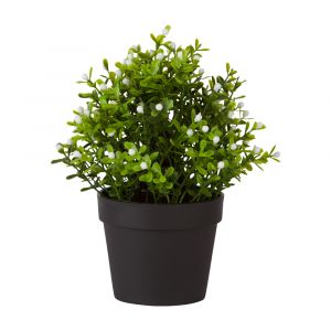 RONNIE Plant in pot 11x11x21cm GN/WT