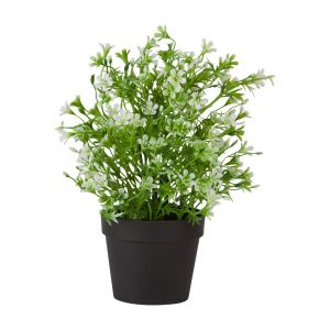 RONNIE Plant in pot 11x11x27cm GN/WT