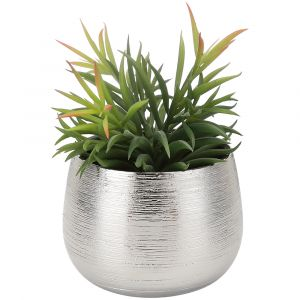 PANNO Plant in pot GN/SV