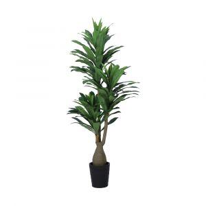 DRANA Dracaena tree w/pot H190cm GN
